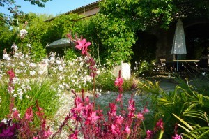 The arbor from the garden view Le mas de la Chouette