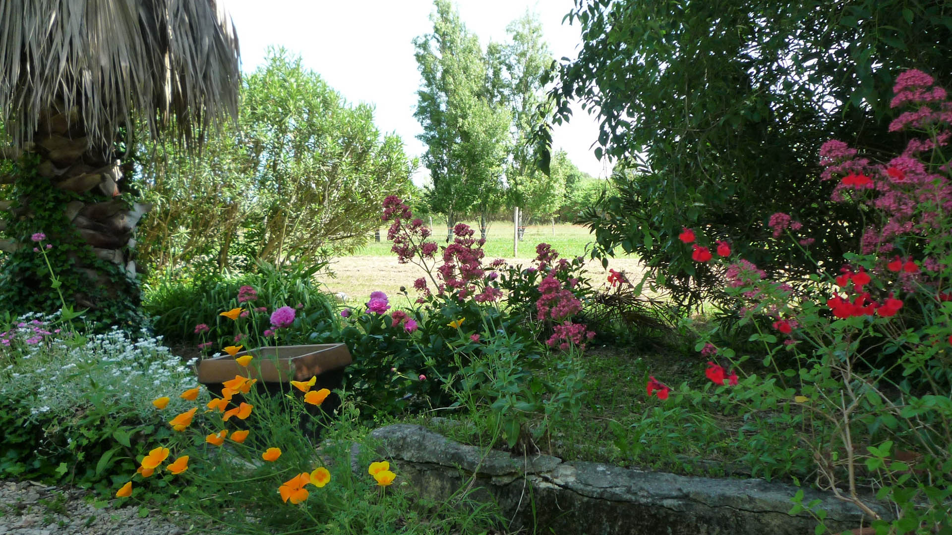 le-jardin-en-fleur-de-mai-a-octobre-gite-mas-de-la-chouette ...