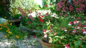 Gîtes et Locations de vacances à Saint-Rémy de Provence 13210 ...